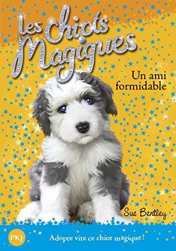 Les chiots magiques - tome 08 : Un ami formidable (08)
