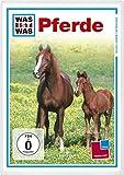 WAS IST DVD: Pferde kostenlos online stream