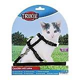 Trixie 4182 Kätzchengeschirr mit Leine, Nylon, 19–31 cm/8 mm, 1,20 m, (farblich sortiert)