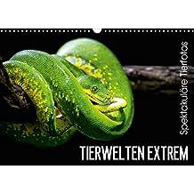 Tierwelten Extrem - Spektakuläre Tierfotos (Wandkalender 2015 DIN A3 quer): Der Tierkalender der Lust auf den nächsten Zoobesuch macht. (Monatskalender, 14 Seiten) (CALVENDO Tiere)