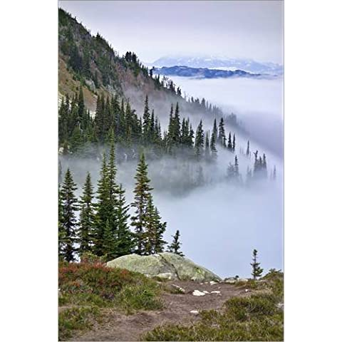 Stampa su legno 70 x 110 cm: British Columbia, Whistler. Coming out of the clouds on Whistler Mountain. di MFR / Danita Delimont
