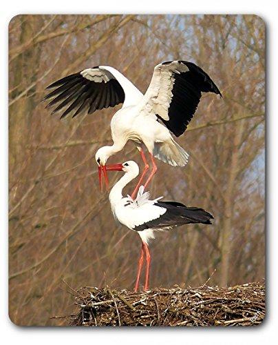 Preisvergleich Produktbild 1art1 93918 Vögel - Ein Storchenpaar Auf Ihrem Nest Mauspad 23 x 19 cm