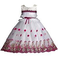RWINDG Blumenmädchen Prinzessin Brautjungfer Festzug Lace Tutu Tüll Kleid Party Hochzeitskleid Neugeborenes Baby... preisvergleich bei billige-tabletten.eu