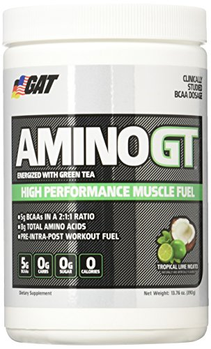 aminogt-alto-rendimiento-de-combustible-del-musculo-tropical-lime-mojito-gat