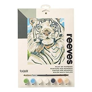 Reeves - Creatividad - Pintar por números - Mediano, tigre blanco