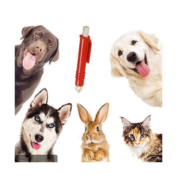 Calops Tick Remover Tick Removal Ticks Tweezers Grooming Tools For Dog,Cat,Horse,Rabbit Eliminate Pests Flea Tweezers 3