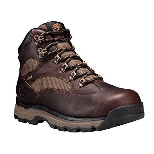 FTP Trail Mid Timberland Brown GTX RG Stiefel Chocorua Kurzschaft Herren Hike Medium OIXOFqE