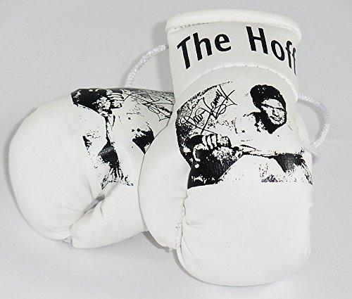 """Preisvergleich Produktbild David Hasselhoff """"The Hoff"""" Mini Boxhandschuhe Rückspiegel"""