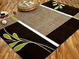 Softstar Designer Teppich Country Grün Braun Blumen in 3 Größen