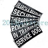 FidgetGear Patches Service Dog Therapy IN Training Label Tag für Hundegeschirr 2 Größen