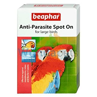 BEAPHAR LARGE PARROT ANTI PARASITE SPOT ON TREATMENT AGAINST ROUNDWORM MITES AND LICE BEAPHAR LARGE PARROT ANTI PARASITE SPOT ON TREATMENT AGAINST ROUNDWORM MITES AND LICE 51DmlbNjssL