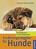Ernährungsratgeber für Hunde: Fit und gesund - Hunde richtig füttern