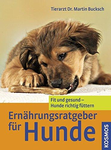 hundeinfo24.de Ernährungsratgeber für Hunde: Fit und gesund – Hunde richtig füttern