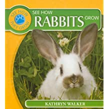 See How Rabbits Grow (See How They Grow (Paper))