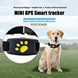 Lifesongs mini Pet GPS Tracker, Smart GPS Tracker per cani gatti anti-perso Tracking device cercatore, Alarm, monitoraggio in tempo reale, Voice monitor, barriera di sicurezza compatibile per il telefono iOS/Android System