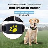Lifesongs - Mini tracker GPS per cani e animali domestici, permette di ritrovare il cane ed evitare di perderlo, richiede scheda SIM 2G