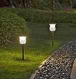 #3: Wonderland Set of 2 Outdoor Solar Light Stake