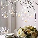 Warmiehomy 6 X Hanging Klarglas Pflanze Blumenvase DIY Bauble Teelicht Kerzenhalter Garten Indoor Outdoor 12 cm