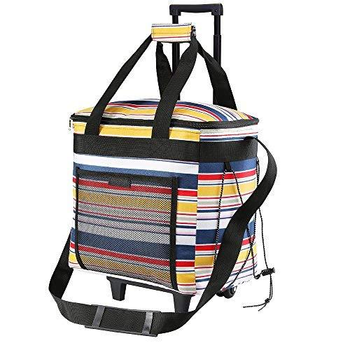 Grande fresco picnic bolso- 28 litros -Térmica Isotérmica