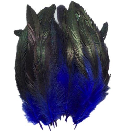 ERGEOB Hahn Feder - Ideen für die Kostüme, Hüte, Home dekor circa 100 stück 12-18cm (Ideen 18 Kostüm)