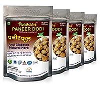 NutrActive Paneer DODI | Indian Rennet | Paneer Doda | Paneer Ka Phool | Withania Coagulans | Anti-Diabetic (800GM)