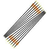 NIKA ARCHERY Fiberglass Arrows for Youth Practise Recurvebow Compound Bow Shooting 12 X