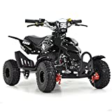 FUN:BIKES FunBikes Kids Mini Quad Bike 49cc 50cc Petrol Quad - Ride On