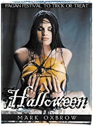 Halloween: Pagan Festival To Trick Or Treat by Mark Oxbrow (2001-01-10)