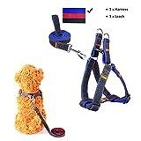 CUGLB arnés con correa ajustable de vaquero para mascotas perro,gato,cinturón de pecho y espalda,hombro para llevar perros con seguridad para perro pequeño,mediano,grande (azul, S)