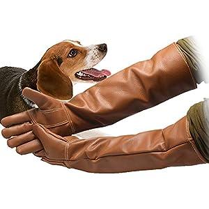Manches longues gants de protection pour animaux Cuir imperméable brun Gants de manipulation des animaux Preuve de la morsure Rembourrage de cuir Chien Chat Éraflures Manipulation des oiseaux Gants de