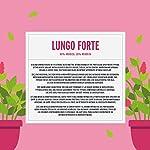 Marchio-Amazon-Happy-Belly-Lungo-Forte-Caff-UTZ-tostato-e-macinato-in-capsule-compostabili-compatibili-Nespresso-5-x-10-capsule-50-capsule