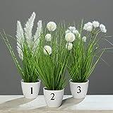 Grasbusch Gras Ziergras Kunstpflanze Dekopflanze H 38 cm 56728-05 getopft F31 (Modell 3)