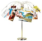 Umbra Fotofalls Desktop Photo/Memo Display with 18 tree clips- Nickel