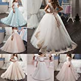 Flower Girls First Communion Dress Lace Ruffles Princess Wedding Bridesmaid Floor Length Layered Puffy Tulle Dresses Pageant Birthday Evening Long Maxi Rhinestone Waist Prom Party Ball Gown for Kids