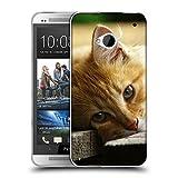 Just Phone Cases Schutz Hülle TPU Case Schutzhülle Silikon Tasche Dünn Transparent // V00004287 Katze liegend auf Holzbrettern // HTC One M7