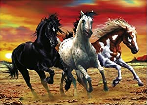Schmidt Spiele  - Mustangs, 1000 Pieza del Rompecabezas de Rompecabezas
