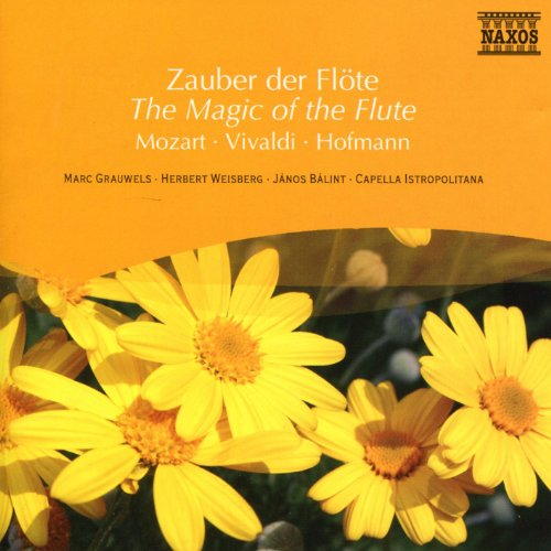 Flute Concerto in G Major, Badley G2: I. Allegro moderato (G2 Magic)