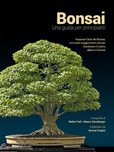Bonsai: Una guida per principianti