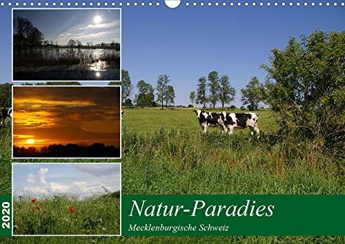 Natur-Paradies Mecklenburgische Schweiz (Wandkalender 2020 DIN A3 quer): Natur-Paradies Mecklenburgische Schweiz (Monatskalender, 14 Seiten ) (CALVENDO Natur)