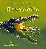 Krokodile bei Amazon kaufen