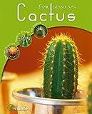 Bien choisir ses Cactus