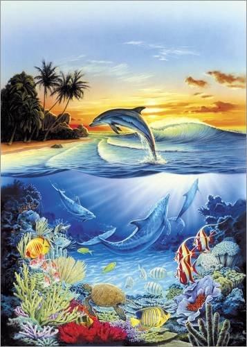 Posterlounge Alubild 60 x 80 cm: Dolphin Lagoon von Robin Koni/MGL Licensing -