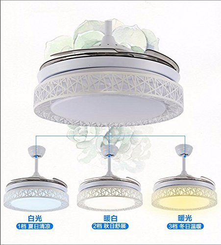 CTREKE Deckenventilator Licht Led schlafzimmer wohnzimmer kind deckenventilator wohnkultur dekorative moderne 49 * 50 cm dimmbar fernbedienung -