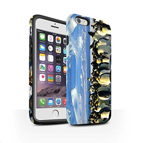 STUFF4 Matte Harten Stoßfest Hülle / Case für Apple iPhone 6 / Weiß Eisbär Muster / Arktis Tiere Kollektion Kaiser Pinguine