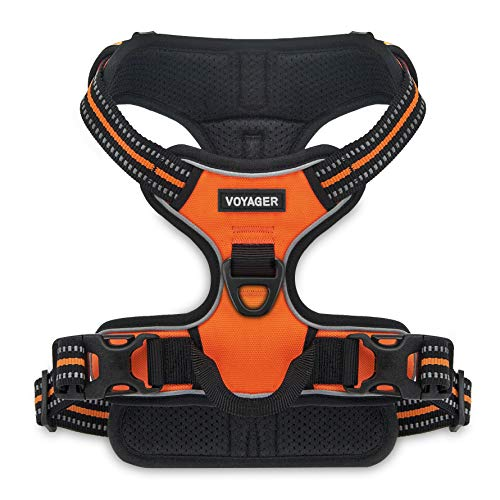 Voyager by Best Pet Supplies, Dual-Attachment No-Pull Adjustable Harness with 3M Reflective Technology, (Orange, X-Small)