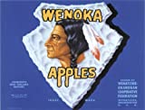 SIGNS 2 ALL 2267Extra Large WENOKA Äpfel Gemüse Vintage Style Nostalgic Werbung Metall Wand Schild retro Art