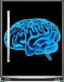 Wallario Sticker/Aufkleber für Kühlschrank/Geschirrspüler/Küchenschränke, selbstklebende Folie - 65 x 80 cm, Motiv: Menschliches Gehirn in leuchtend blauer Farbe