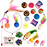 Nabance 21 Pcs Cat Toys Cat Wand Toys for Kittens Cat Teaser Toys Interactive Cat Toys Feathers Catnip Bell Crinkle Balls Mice Cat Toys Set for Indoor Kitty