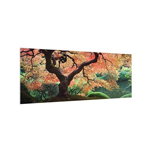 Bilderwelten Panel antisalpicaduras de cristal - Japanese Garden - Panorámico, panel antisalpicaduras panel de vidrio para cocina panel protector contra salpicaduras, Tamaño: 50cm x 125cm