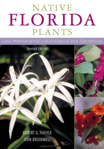 Native Florida Plants: Low Maintenance Landscaping and Gardening Revised by Haehle, Robert G., Brookwell, Joan (2004) Paperback